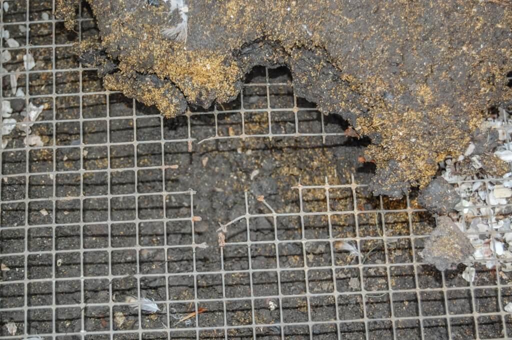 Rodent mesh, Rat mesh, Mouse mesh, Insect mesh and Soffit mesh